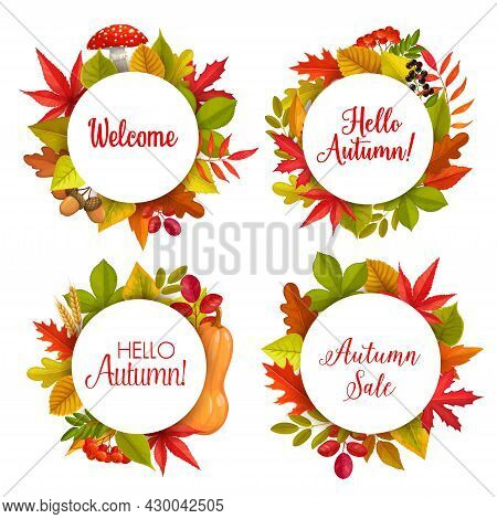 Hello Autumn Sale Vector Round Frames With Fallen Leaves Of Maple, Rowan And Chestnut, Oak And Birch
