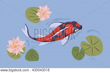 Asian Japanese Koi Fish Swimming In Pond. Japan Carp In Water With Flowers. Top View Of Chinese Orie