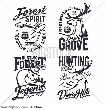 Forest Hunting Club T-shirt Print Template With Deer. Mule Or Whitetail Deer Male Head With Horns, M