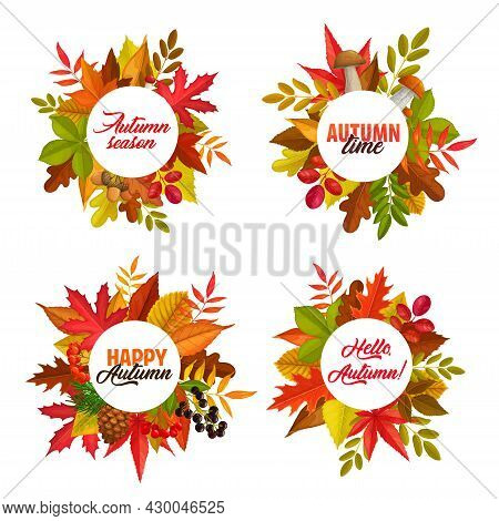 Autumn Season Vector Round Frames With Fallen Leaves Of Maple, Rowan And Chestnut, Oak And Birch Tre