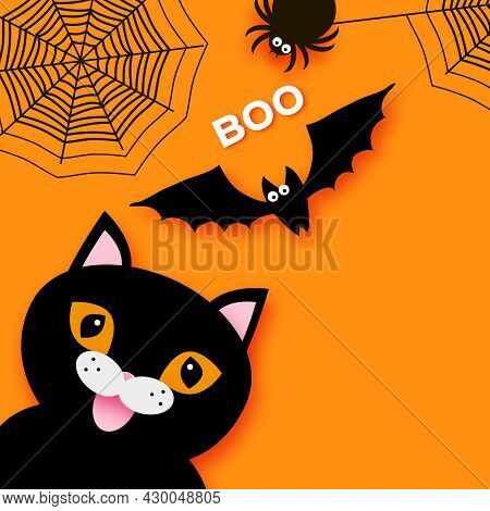 Happy Halloween. Black Cat. Trick Or Treat. Bat, Spider, Web. Space For Text. Boo. Orange.