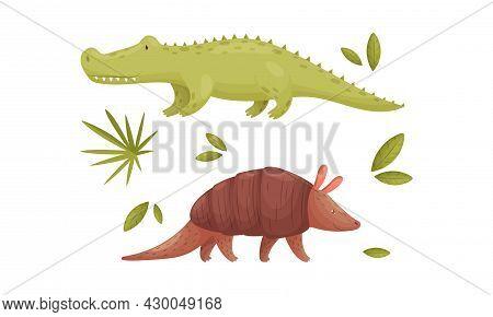 Cute Exotic Animals Set. Crocodile And Armadillo Cartoon Vector Illustration