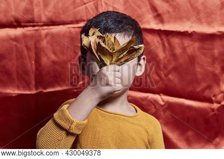 A Little Boy Covering His Face With A Pile Of Fall Leaves. A Young Boy Holds Autumn Leaves