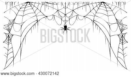 Scary Spider Web And Poisonous Spider Top Frame On White Background Symbol Of Halloween