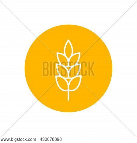 Wheat Spike Vector Icon Isolated On Circle Background, Grain Ear Icon Element For Organic Food Desig