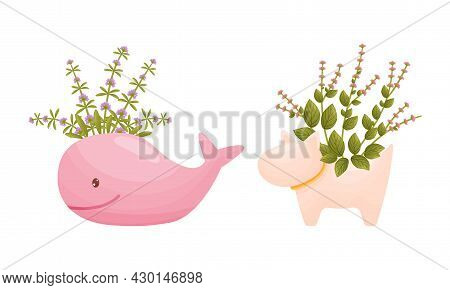 Garden Potted Plants In Pots Of Different Shapes Set. Ceramic Flower Pots In Shape Of Whale And Dog