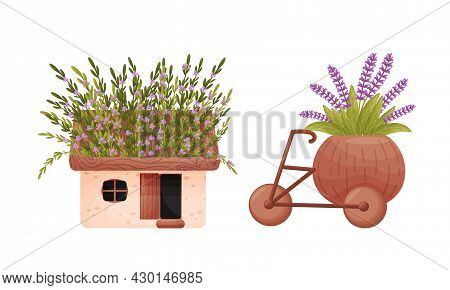 Garden Potted Plants In Pots Of Different Shapes Set. Ceramic Flower Pots In Shape Of House And Cart