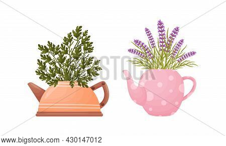 Garden Potted Plants In Pots Of Different Shapes Set. Ceramic Flower Pot In Shape Of Teapots Vector