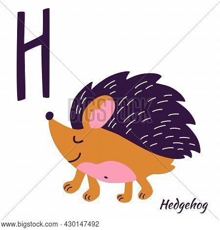 Hedgehog. Animal Alphabet. Learning Letter H. H Is For Hedgehog. Hand Draw Forest Animals In Scandin