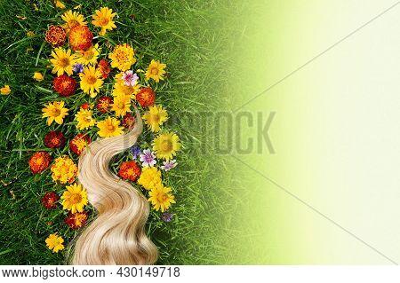 Blonde Hair Lock. Strand Of Honey Blonde Hair On Green Grass Background, Top View. Hairdresser Servi