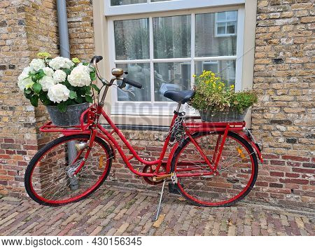 Typical dutch: old red dutch bike with blossoming flowers in the Netherlands