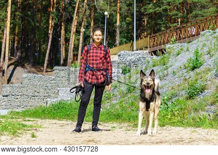 A Girl With Her Dog Is Walking, In A Country Park, In The Forest. Copy Space In Nature
