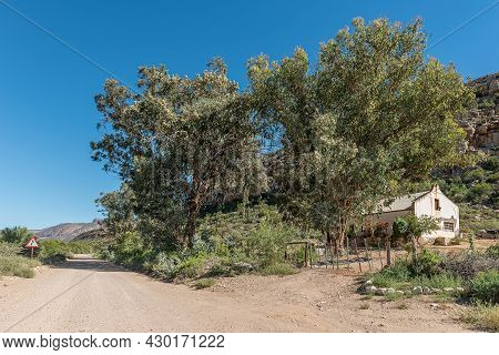 Rietfontein, South Africa - April 7, 2021: A Farm Building And Large Trees Next To Road P294