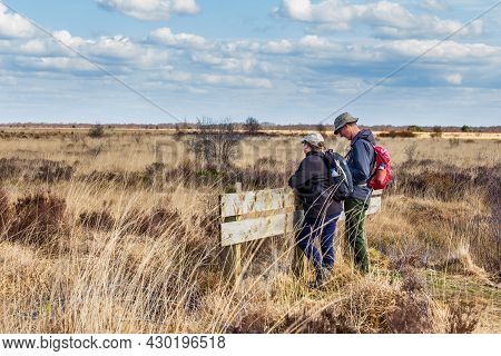 Fochteloerveen, The Netherlands - April 16, 2021: Hikers Looking Checking Their Route In Nature Park