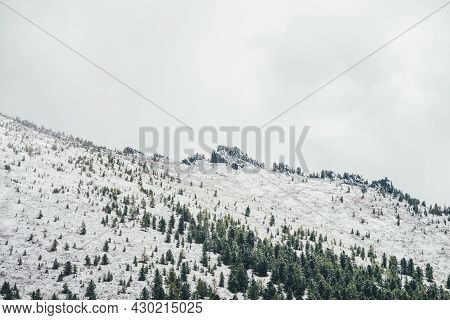Winter Landscape With Snowy Mountain With Coniferous Forest And Pointy Pinnacle With Trees On Top In