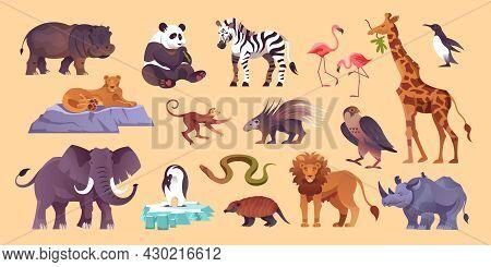 Zoo Animals Big Set With Panda Zebra Flamingo Lion Elephant Penguin Rhinoceros Porcupine Yellow Back