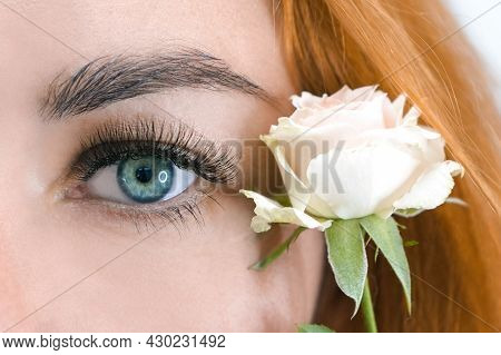 Eyelash Extension. Macro Beautiful Eye With Long Eyelashes With A Rose