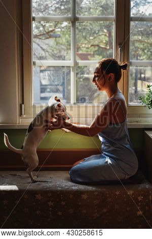 Beautiful Brunette Woman Caress Her Dog By The Window