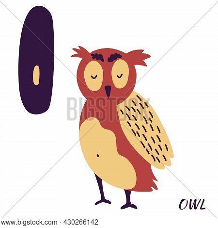 Owl Animal Alphabet. Learning Letter O. Hand Draw Forest Animals In Scandinavian Style. Alphabet Ser