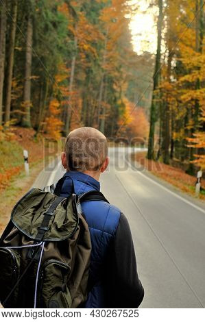 Traveler With A Backpack Walksin The Autumn Forest.autumn Hikes.walking And Hiking.beautiful Autumn