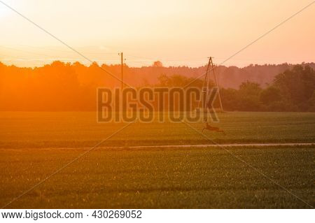 A Beautiful Evening Scenery Of A Rural Landscape. Sunset In The Country Landscape. Summertime Scener
