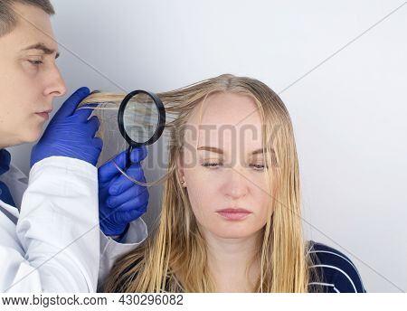 A Trichologist Examines A Girl With Oily Hair. Problematic Scalp And Increased Secretion Of The Seba