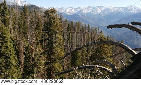 Panoramic View From Moro Rock In Sequoia Forest National Park, Northern California, Usa. Overlooking