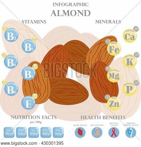 Infographic About Nutrients In Almond. Vector Illustration Of Almond, Vitamins, Nuts, Healthy Food,