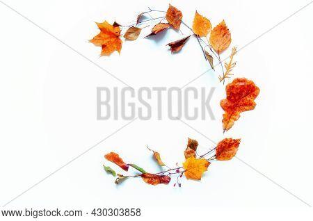 Autumn background, autumn composition, seasonal autumn leaves on the white wooden background with space for text. Autumn still life, autumn border, autumn frame, autumn leaves, autumn background