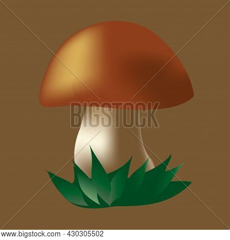 Volume Mushroom. 3d. Season, Autumn, Nature In Autumn. Forest Mushroom In The Grass. Isolated Vector