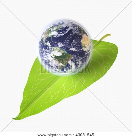 Earth On Green Leaf