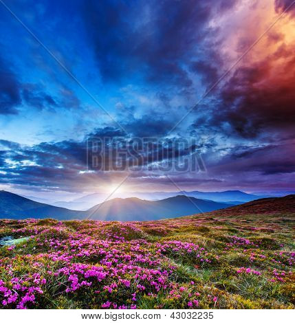 Majestic sunset in the mountains landscape. Overcast sky before storm. Carpathian, Ukraine, Europe. Beauty world.