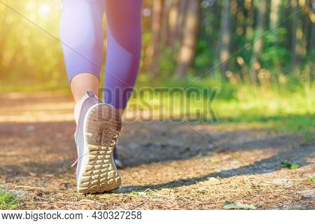 Woman Walking On Hiking Trail In Forest.walking,running Legs In Forest, Adventure And Exercising In