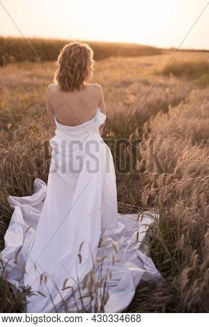 A Young Girl Stands Wrapped In A White Blanket Nens , Standing In A Field Of Wheat With Sunlight.