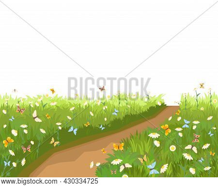 Road. Meadow With Wildflowers And Butterflies. Illustration. Grass Close-up. Green Landscape. Isolat