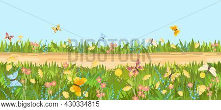 Seamless Sandy Road. Horizontal Border Composition. Summer Flowers Meadow Landscape. Juicy Grass. Ru