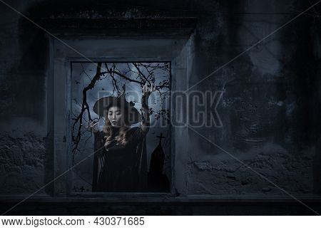 Mystery Halloween Witch Standing In Old Damaged Window With Wall Over Cross, Church, Birds, Dead Tre