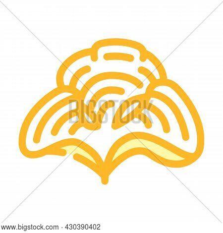 Padina Seaweed Color Icon Vector. Padina Seaweed Sign. Isolated Symbol Illustration