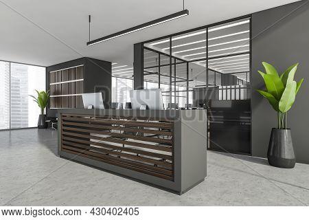 Corner Of Panoramic Grey Open Space Interior With Front Desk, Having Dark Wood Panels, Linear Lighti