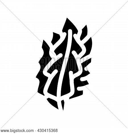 Japanese Kelp Seaweed Glyph Icon Vector. Japanese Kelp Seaweed Sign. Isolated Contour Symbol Black I