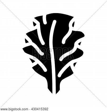 Ulva Lettuce Seaweed Glyph Icon Vector. Ulva Lettuce Seaweed Sign. Isolated Contour Symbol Black Ill