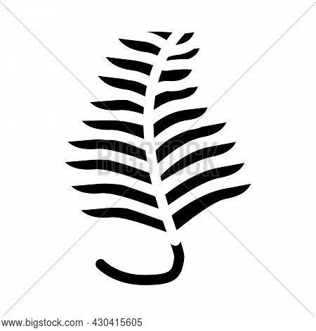 Undaria Plumose Seaweed Glyph Icon Vector. Undaria Plumose Seaweed Sign. Isolated Contour Symbol Bla