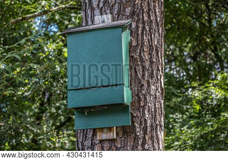 A Painted Wooden Bat Housing Box High Up Mounted On A Tree Vertically Where The Bats Fly Into The Bo