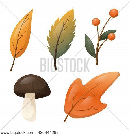 Set Of Vector Isolated Autumn Elements. Fallen Dry Orange Leaves, A Forest Mushroom And A Twig With