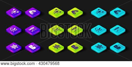 Set Turtle, Whale Tail In Ocean Wave, Seaweed, Fish With Sliced Pieces, Mussel And Lobster Icon. Vec
