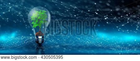 Environmental Technology. Tree Growing On Lightbulb With Digital Convergence. Blue Network Technolog