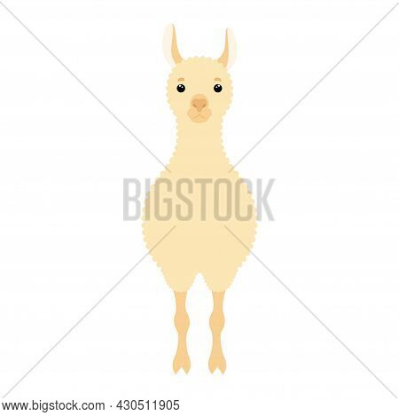 Cute Lama. Design Element For Textile, Poster, Banner, Flyer, Prints For Clothes. Vector Colorful Il