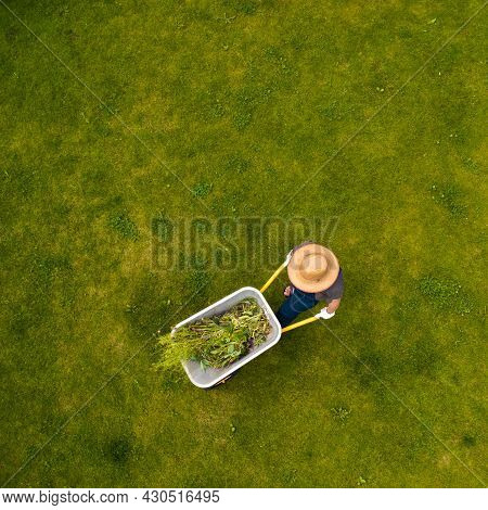 A Young Man With Hands In Gloves Is Carrying A Metal Garden Cart Through His Beautiful Green Bloomin