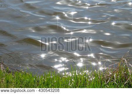 Sun Glare On Soft Waves Near Sedge-covered Riverbank
