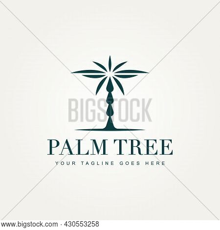 Palm Tree Premium Minimalist Logo Icon Vector Illustration Design